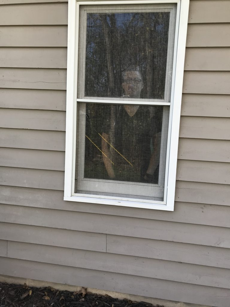 A photo of the cardboard standee looking out the garage window